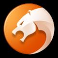 金山猎豹浏览器