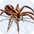 屌德斯解说打蜘蛛模拟器